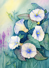 morning glories watercolor painting